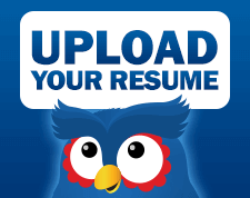 Resume Consultant  Healthcare Consultant Resume Sample The Resume     SlideShare